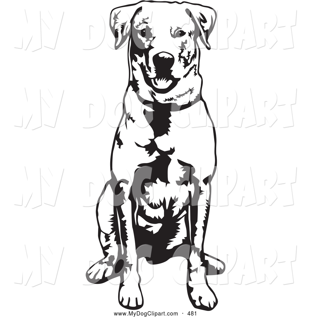 Collection of Labrador clipart.