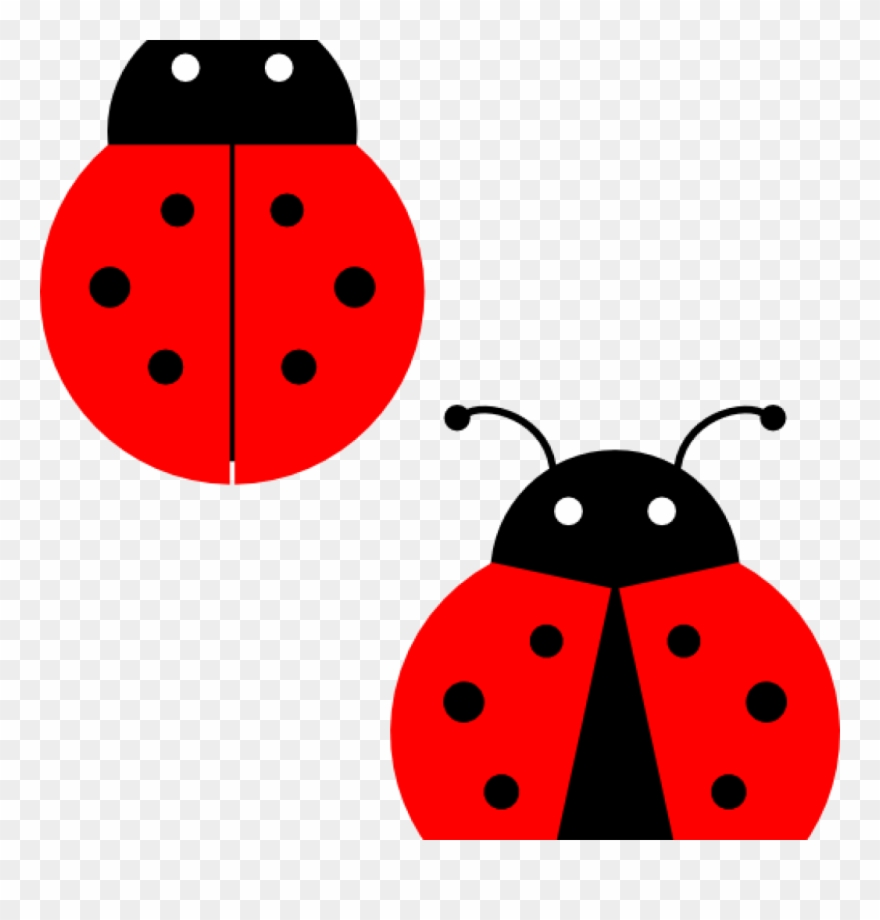 Ladybugs Clipart Ladybugs Clip Art At Clker Vector.