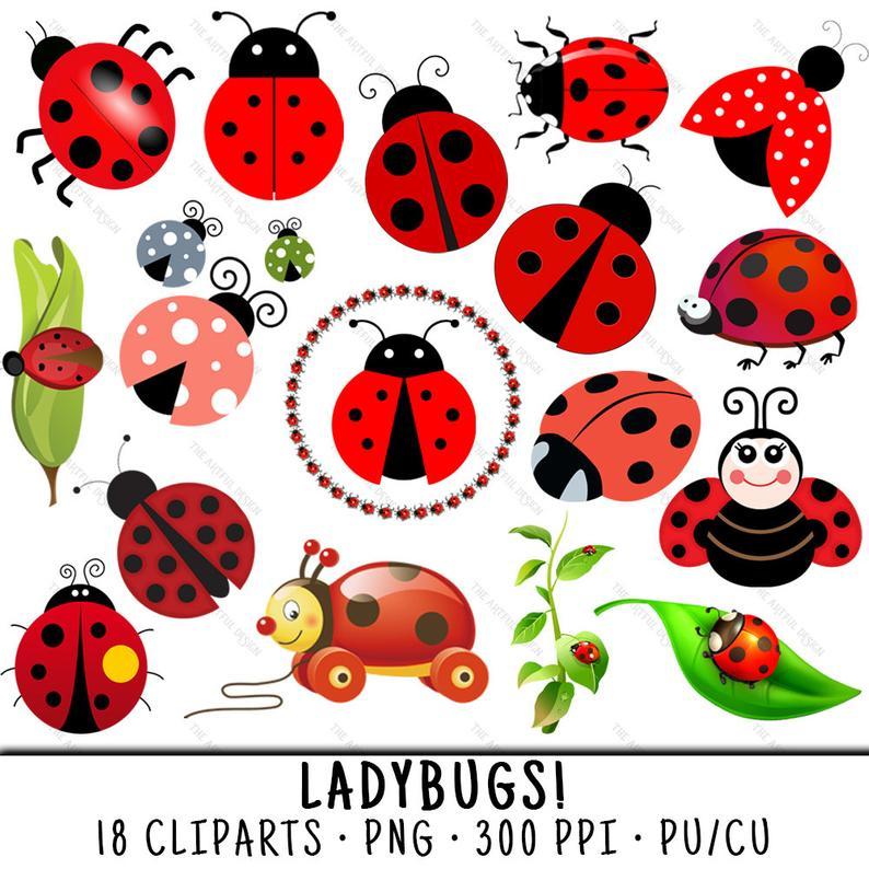 Ladybug Clipart, Spring Clipart, Ladybug Clip Art, Spring Clip Art, Ladybug  PNG, Spring PNG, Clipart Ladybug, Spring Ladybugs.