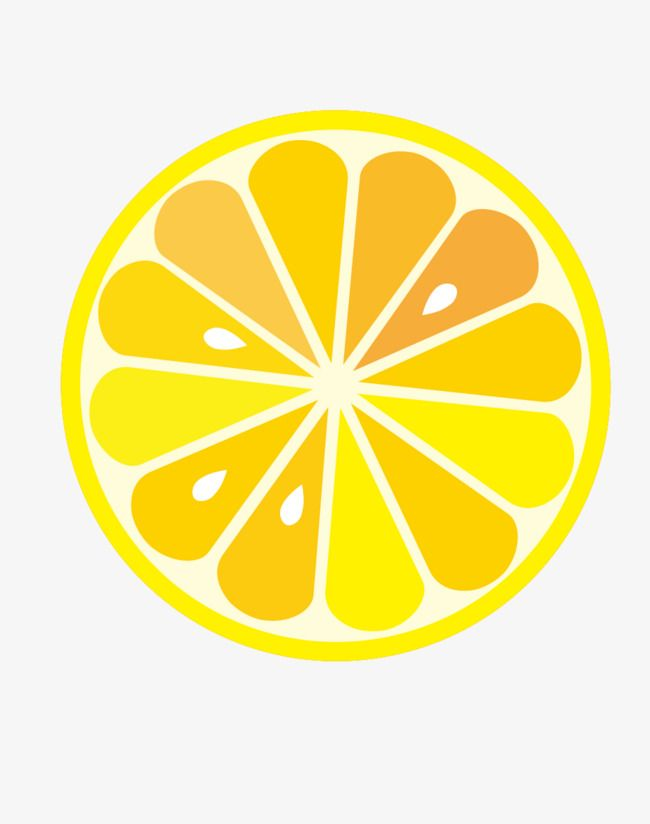 Yellow Lemon Vector, Yellow Lemon Slices, Cut Lemon Slices, Organic.
