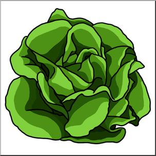 Clip Art: Lettuce Color I abcteach.com.