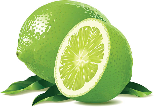 Best Lime Illustrations, Royalty.