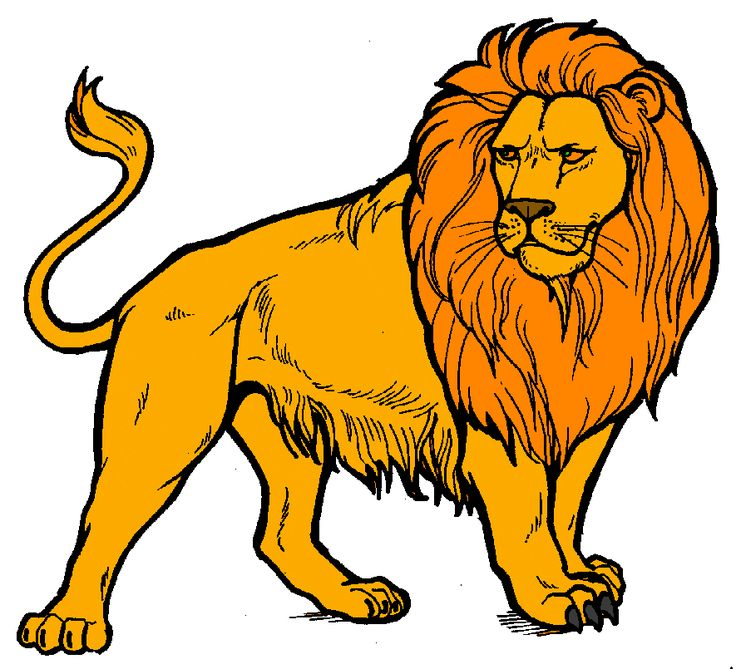 Lion clipart ideas on dell products web.