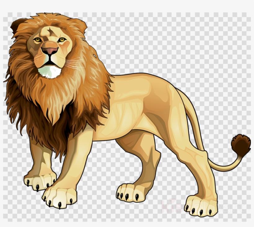 Vector Lion Clipart Lion Clip Art.