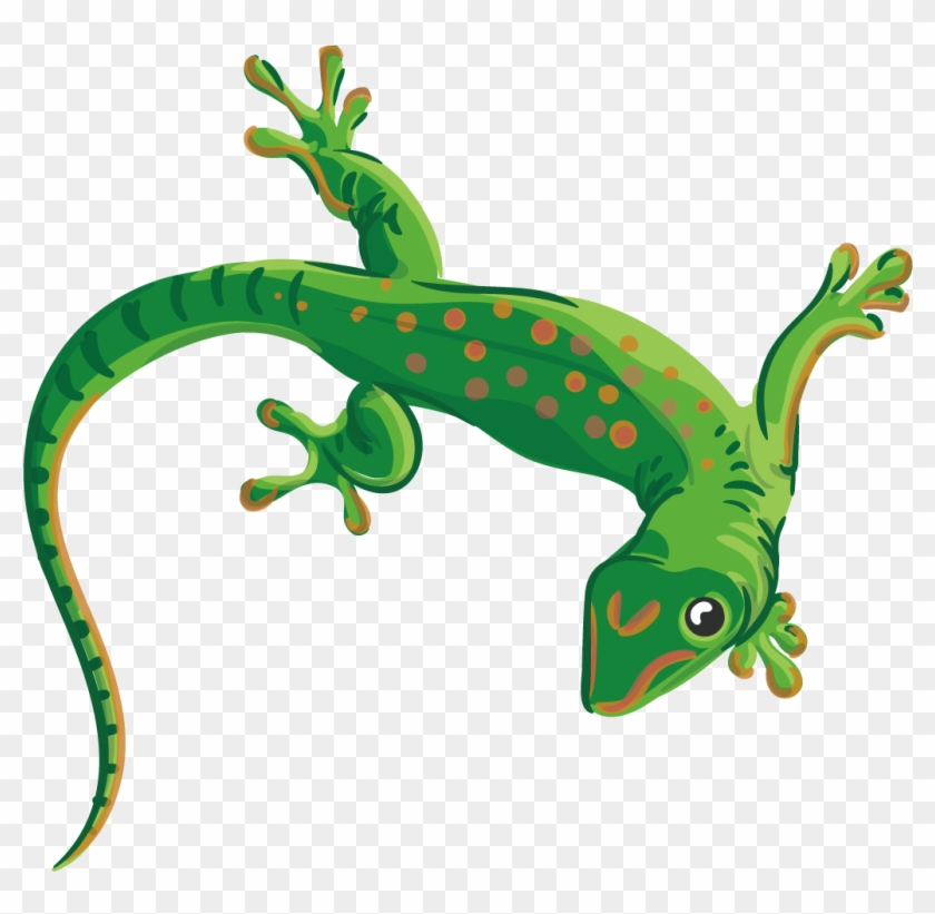 Collection Of Free Lizard Vector Reptile.