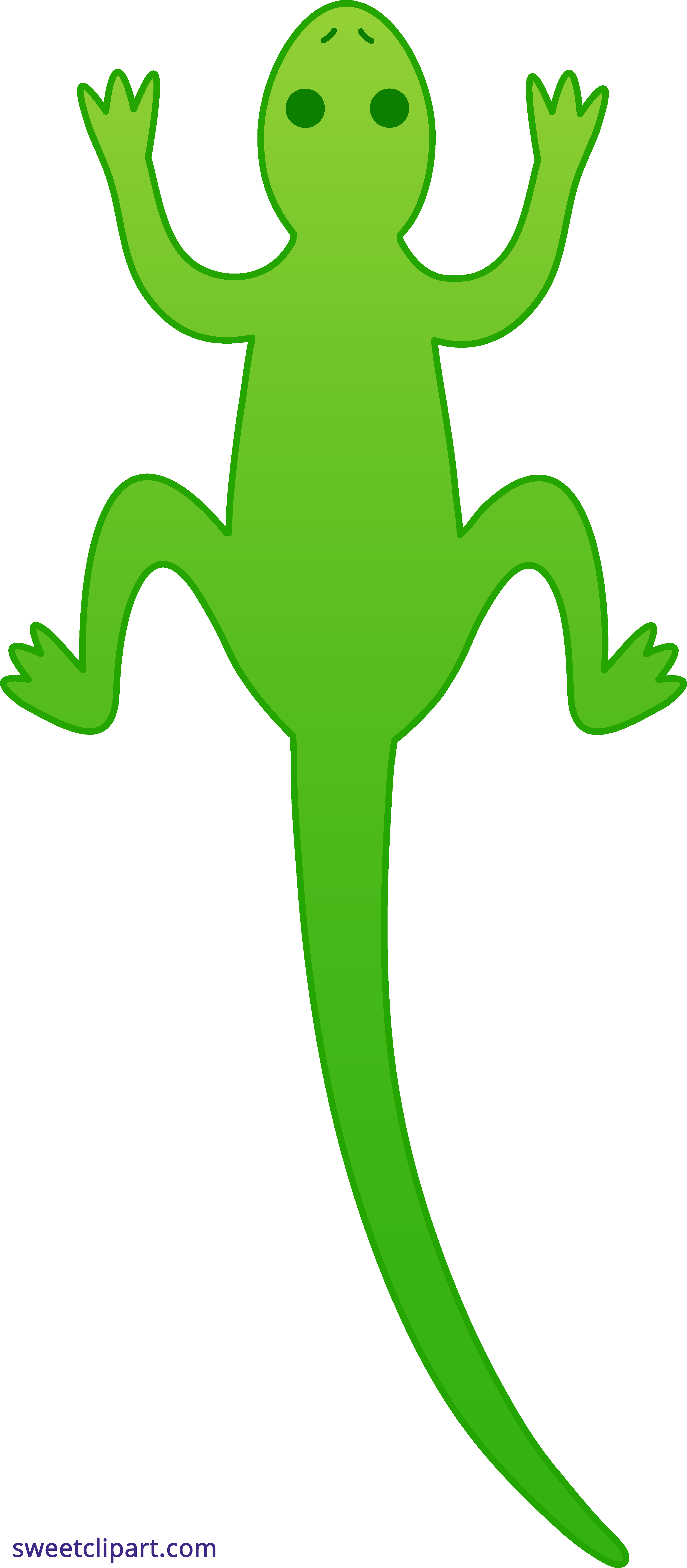 Lizard Green Clipart.