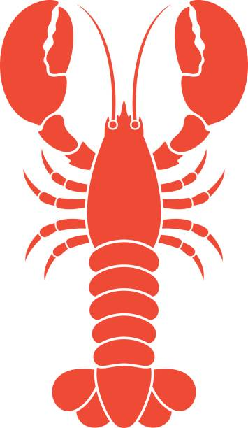Best Lobster Illustrations, Royalty.