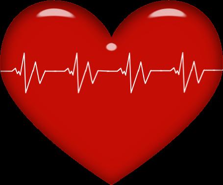 Heart clip art medical.