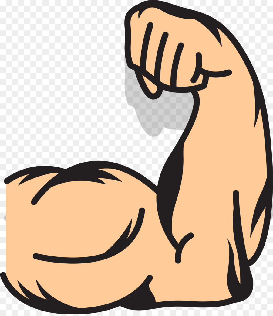 Arm muscle clipart 7 » Clipart Station.