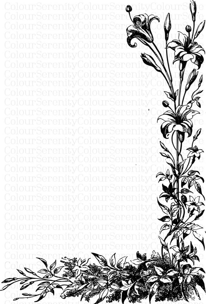 Vintage Nature Borders Clip Art 5 Printable Instant Download Black and white.