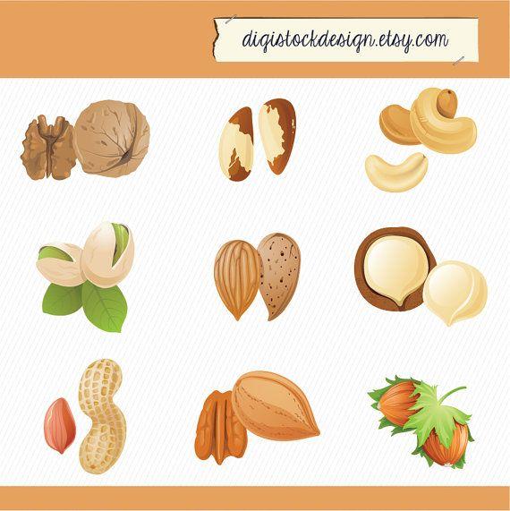 Nuts Illustration Clipart. Peanuts, cashews, walnuts, chestnuts.