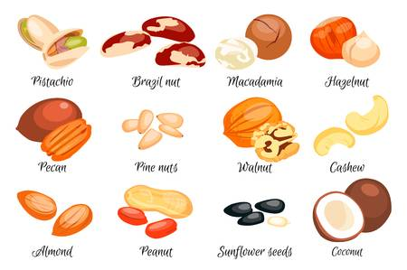 68,918 Nut Stock Illustrations, Cliparts And Royalty Free Nut Vectors.