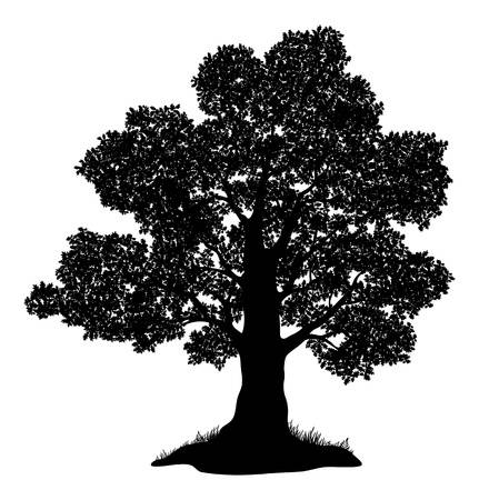 13,409 Oak Tree Silhouette Cliparts, Stock Vector And Royalty Free.