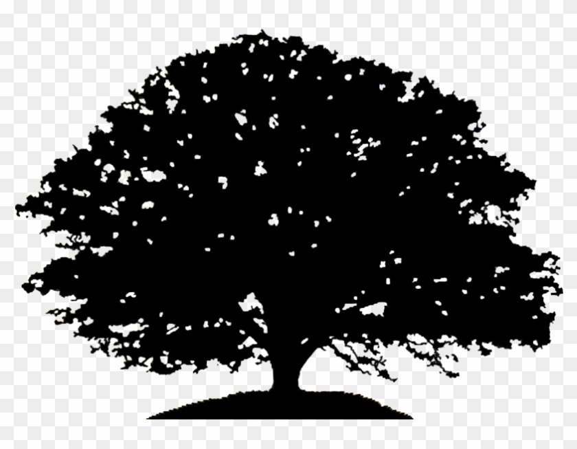 Oak Tree Silhouette Drawing Clip Art.