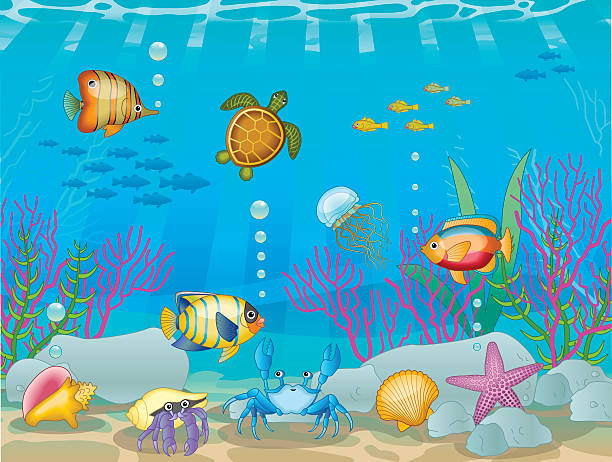 Best Clip Art Of Underwater Ocean Scenes Illustrations, Royalty.