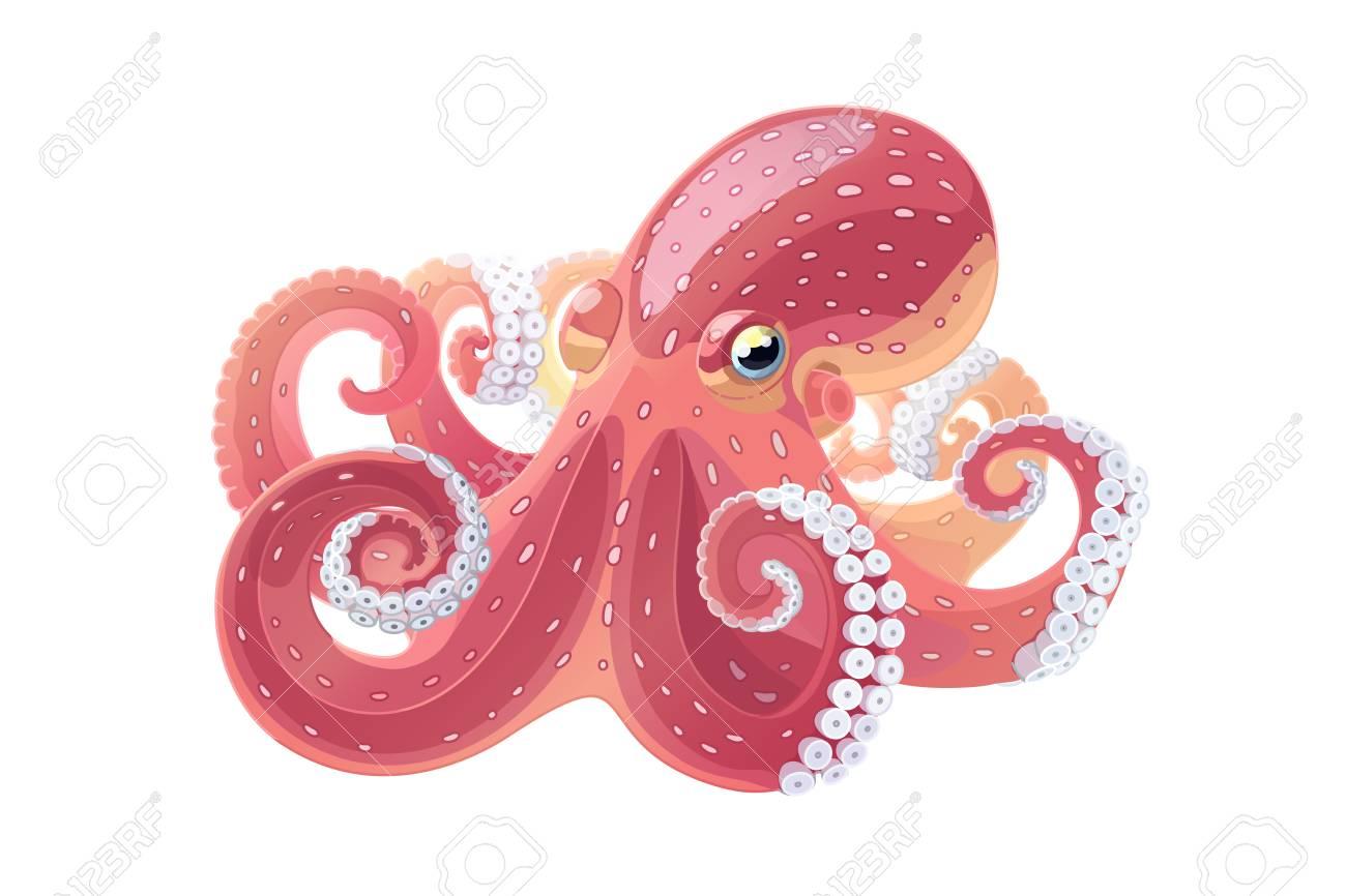 vector cartoon animal clipart: octopus, sea life.