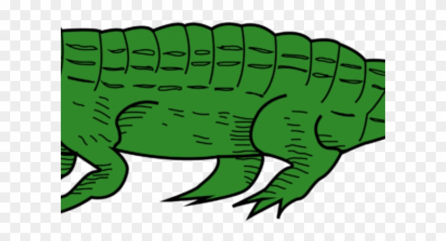 Swimming Clipart Alligator.