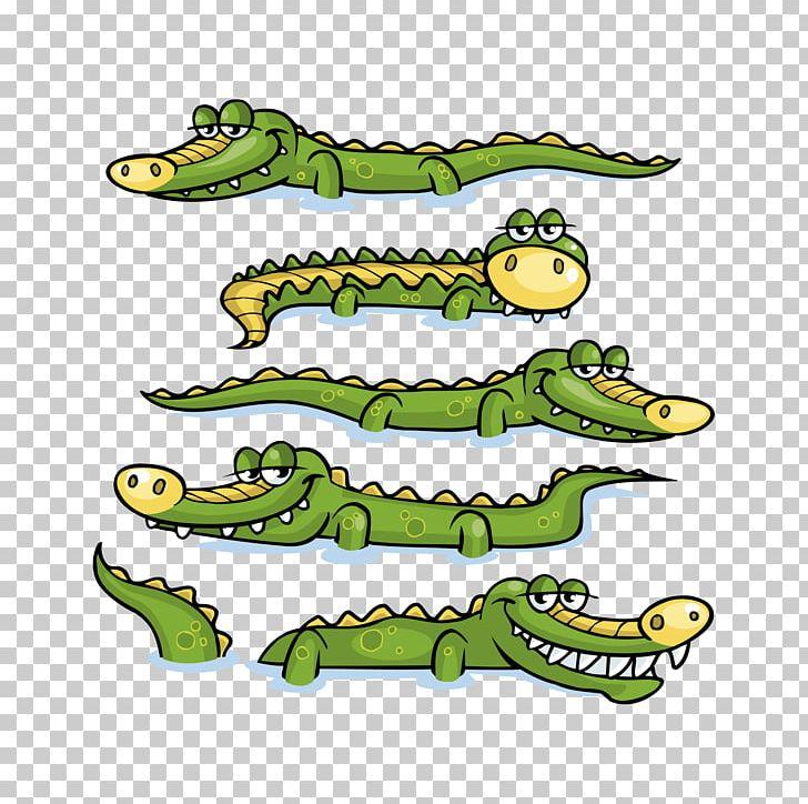 Nile Crocodile Alligator Prenasalis PNG, Clipart, Alligators.
