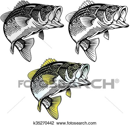 Bass fish isolated Clipart.