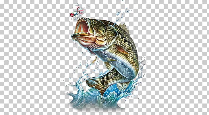 Largemouth bass Silhouette Bass fishing , Bass Jumping s, silhouette.