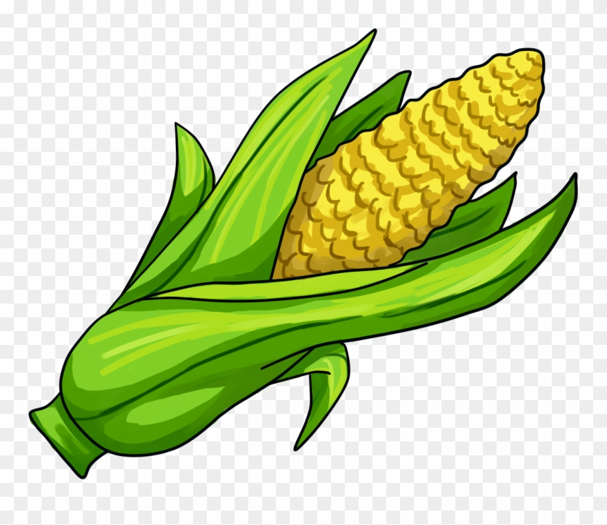 Corn On The Cob Maize Clip Art.