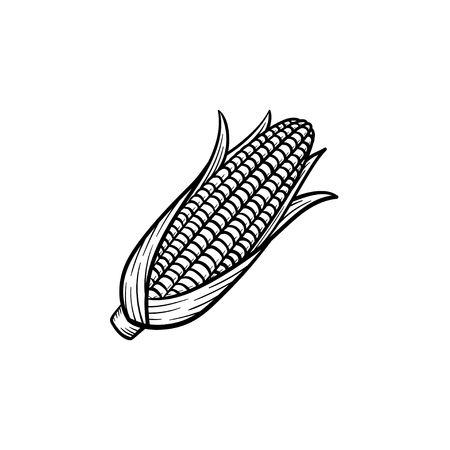 4,216 Corn On The Cob Stock Illustrations, Cliparts And Royalty Free.