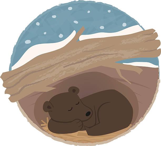 Best Bear Den Illustrations, Royalty.