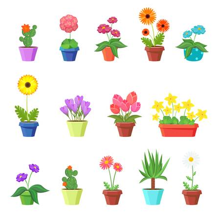 41,037 Flower Pot Stock Illustrations, Cliparts And Royalty Free.
