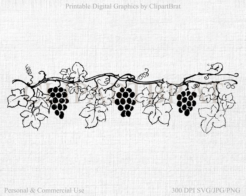 GRAPE VINE CLIPART Commercial Use Clipart Grapes Digital Collage sheet  Grape Vine Fabric Transfer Clipart Vector Clipart Jpg/Png/Svg.