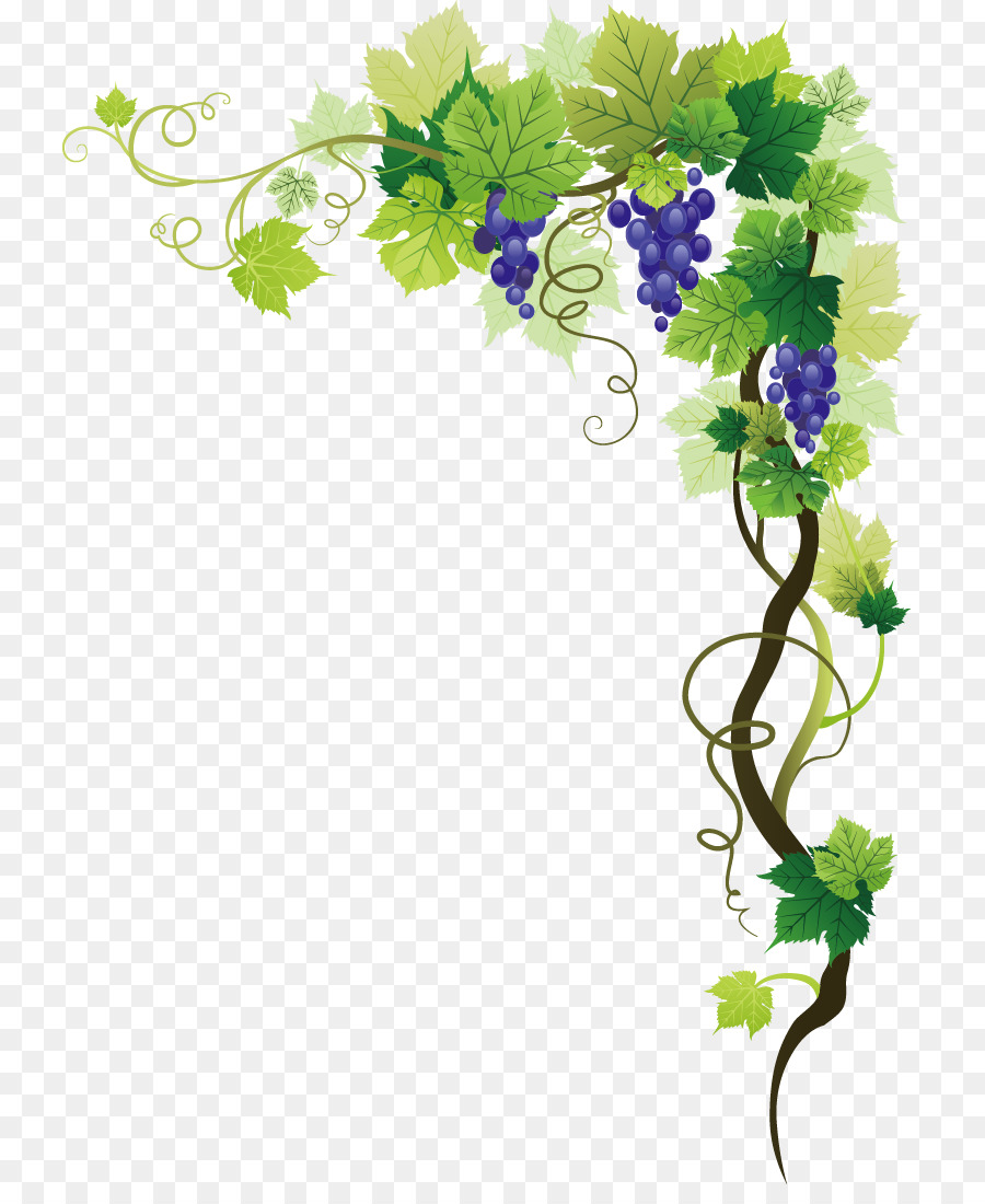 Green Leaves Frame png download.