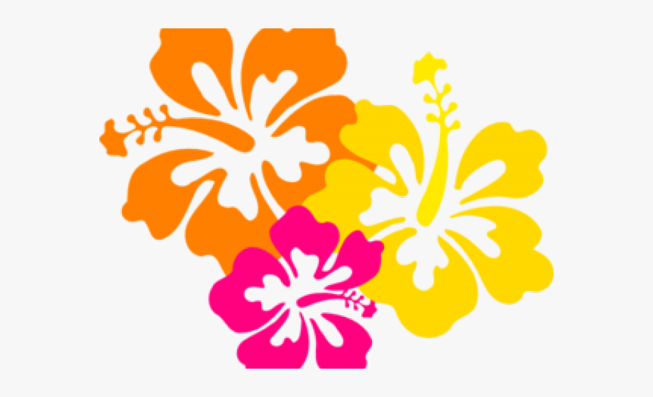 Flowers Borders Clipart Hawaiian Flower.