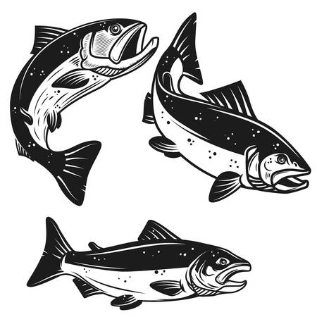 2,302 Salmon Swimming Cliparts, Stock Vector And Royalty Free Salmon.