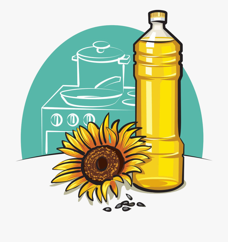 Nut Clipart Oil Seed.