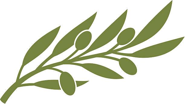 Best Olive Branch Illustrations, Royalty.