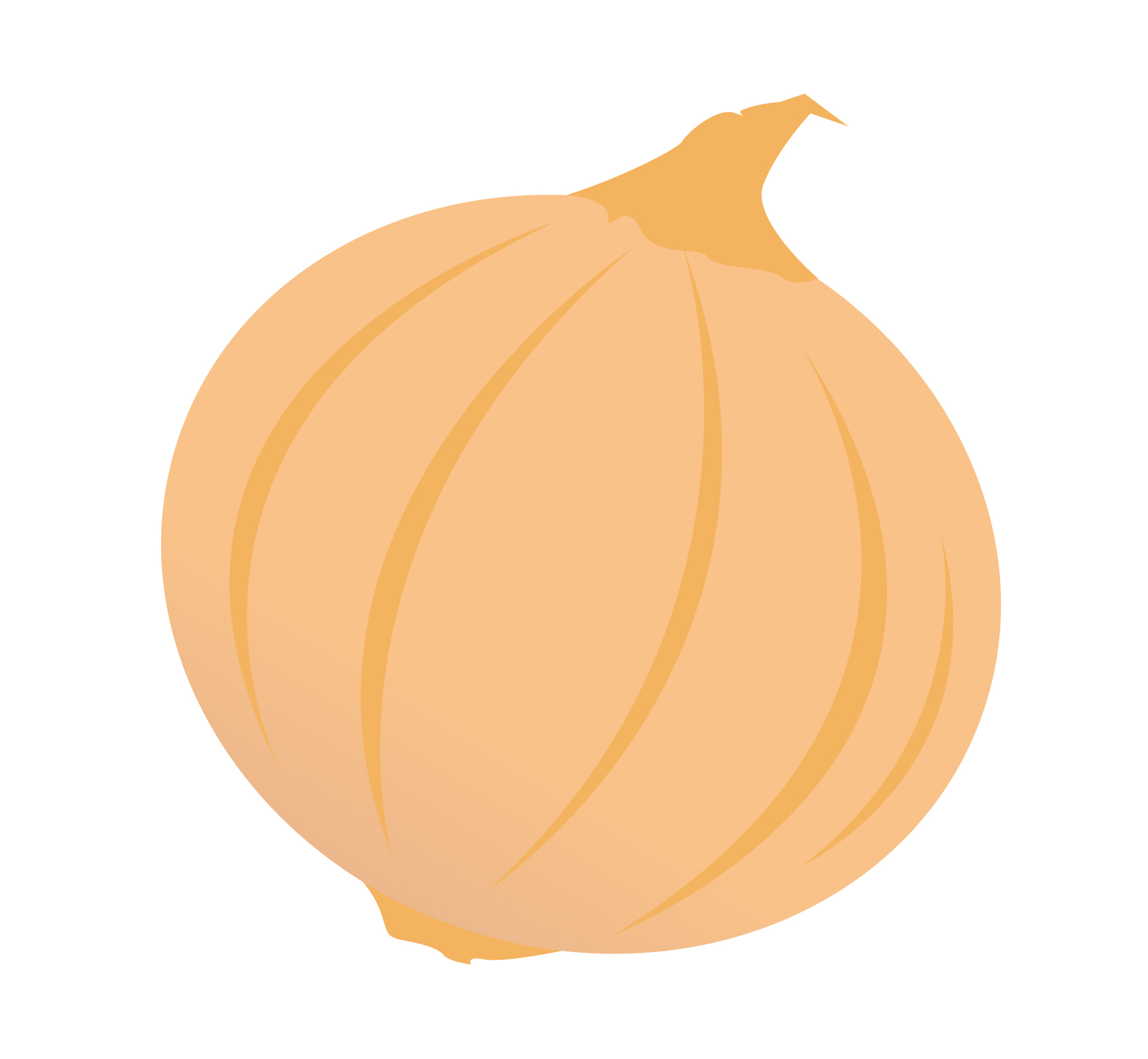 Onion Clip Art N19 free image.