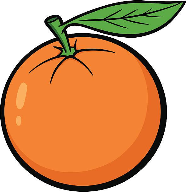 Best Oranges Illustrations, Royalty.