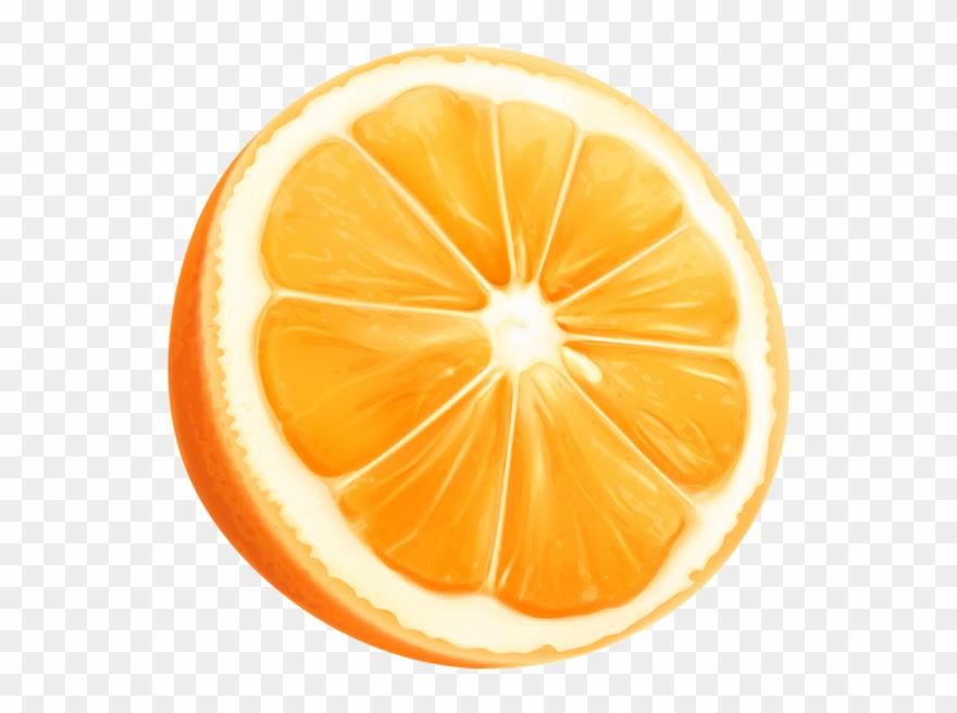 Orange Slice Png Clip Art Imageu200b Gallery Yopriceville.