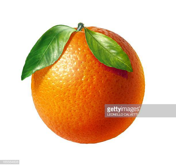 60 Top Oranges Stock Illustrations, Clip art, Cartoons, & Icons.