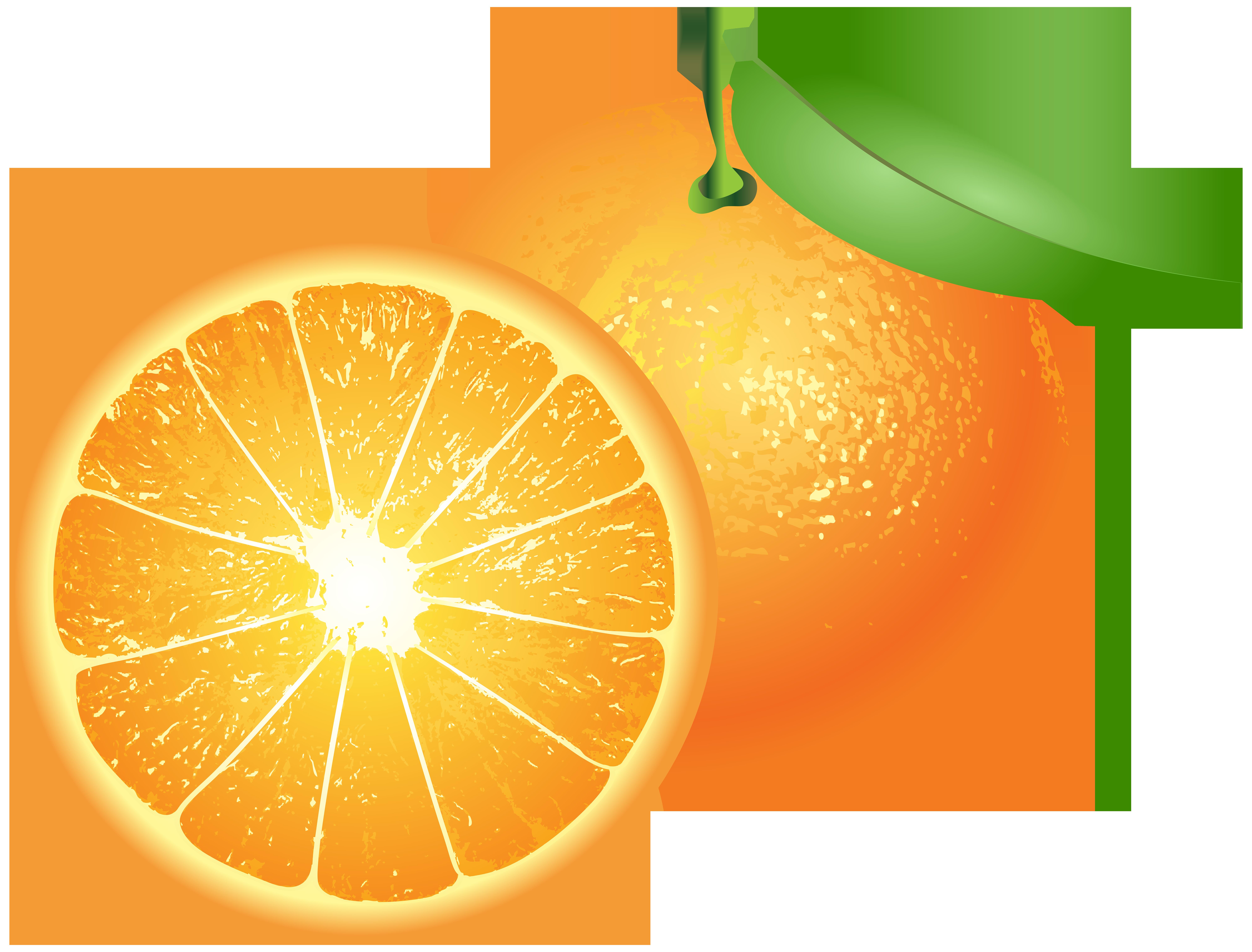 Oranges PNG Clip Art.