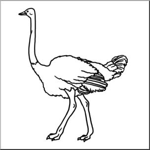 Clip Art: Ostrich B&W I abcteach.com.