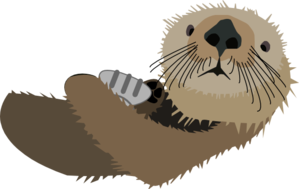 Otter With Shell Clip Art at Clker.com.