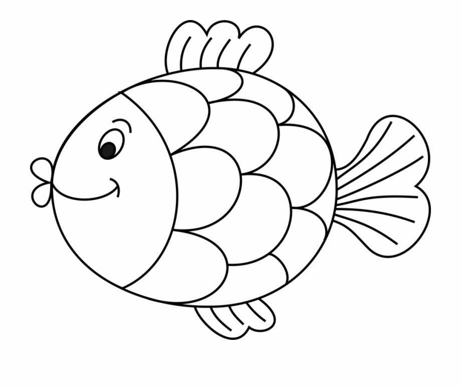 Drawing Whitefish Black And White Line Art.