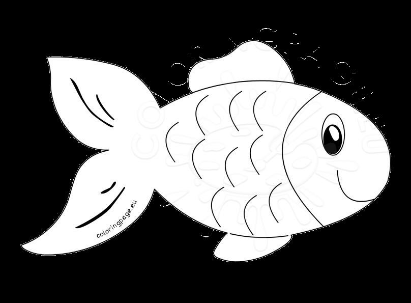 Fish Clipart Outline Transparent Png.