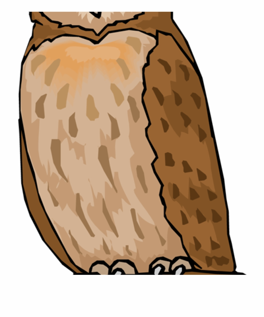 Vector Royalty Free Owl Clipart Free.
