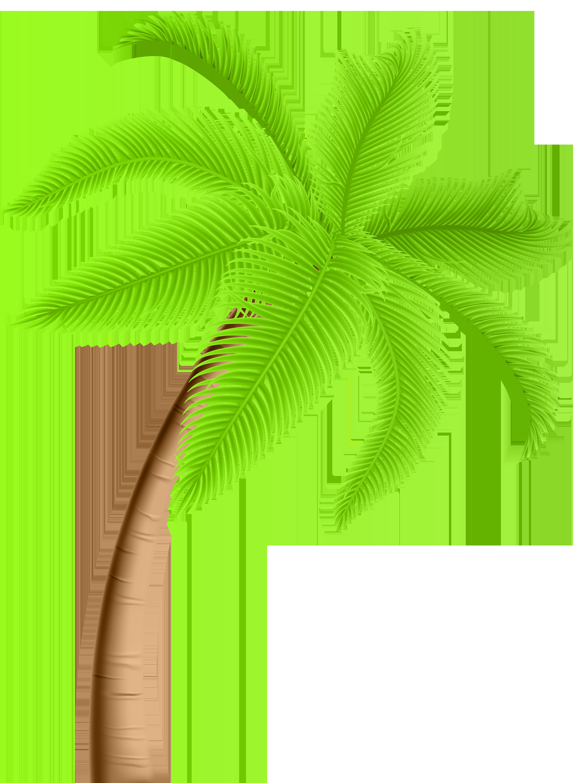 Palm Tree PNG Clip Art.