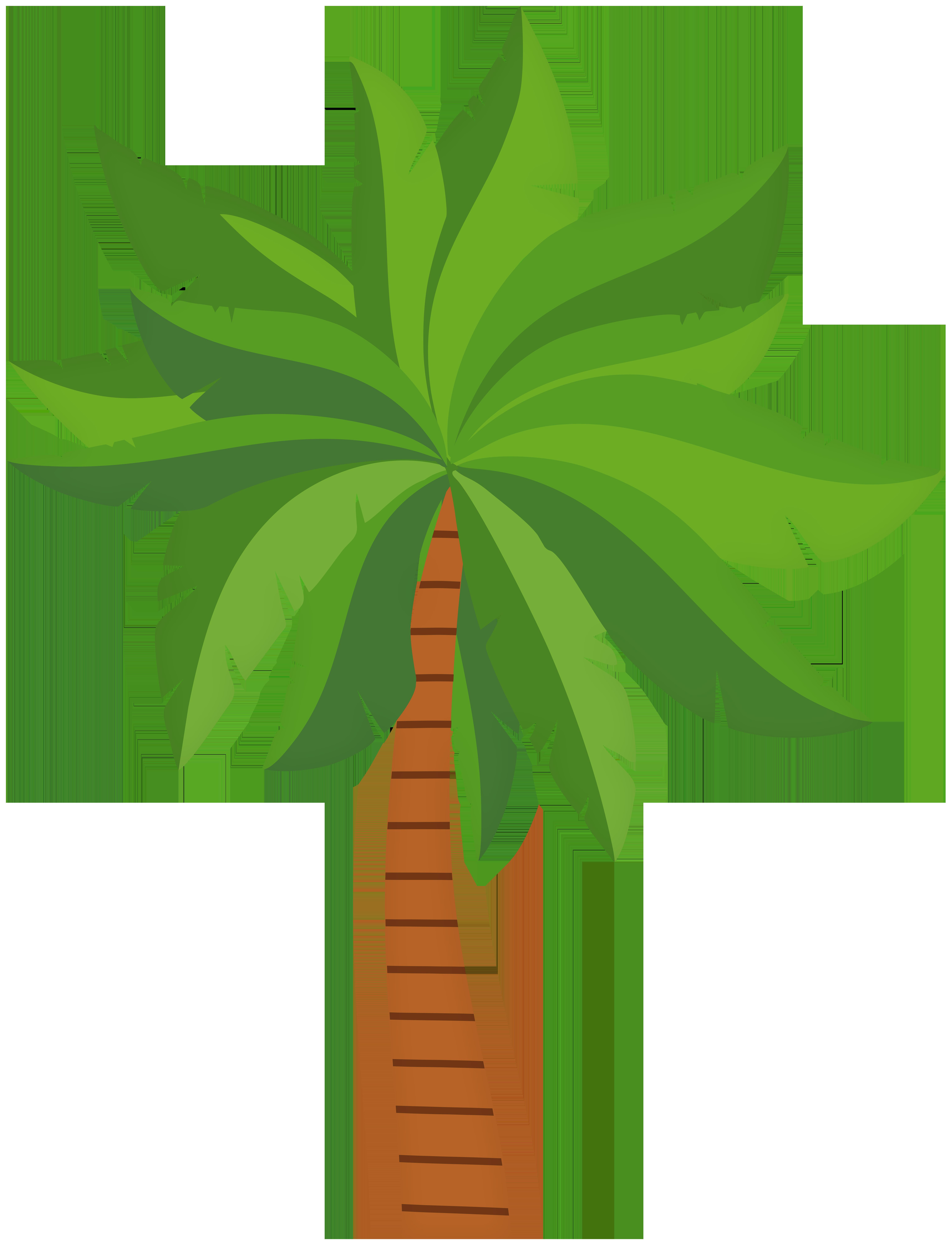 Palm Tree PNG Clip Art Image.