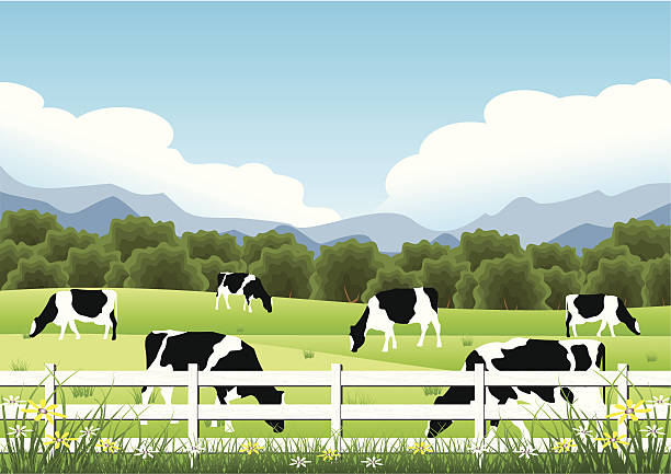 Best Pasture Illustrations, Royalty.