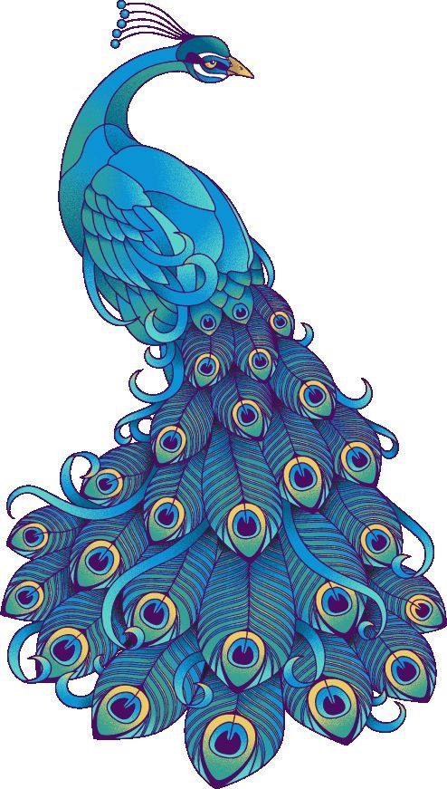 CLIP ART GALORE ~ Peacock.