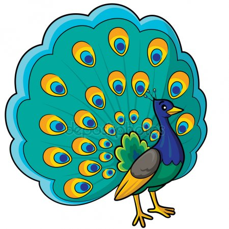 Peacock Clipart 155 Clip Arts For Free Download On Complete Images.