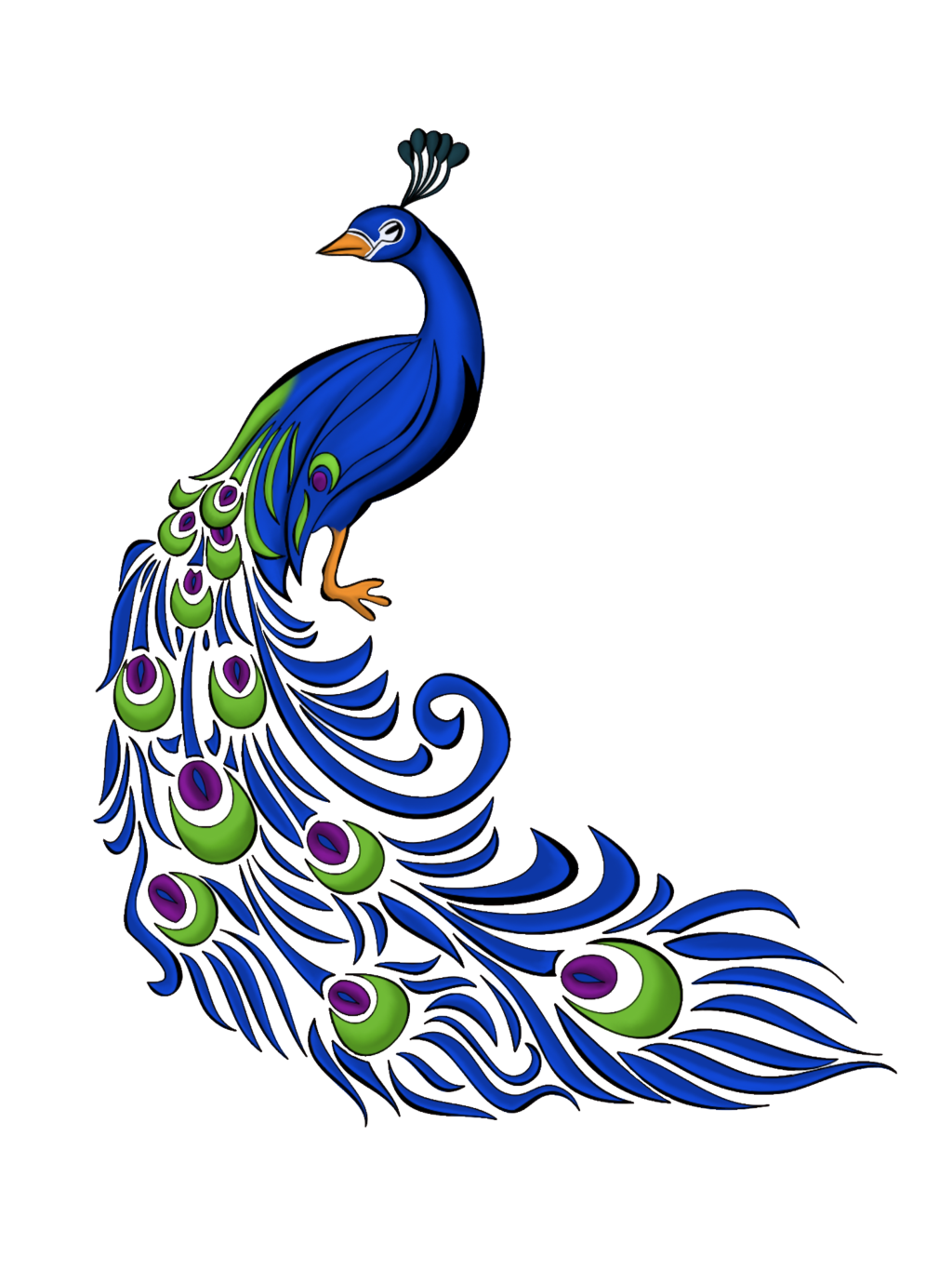 Peacock Feather Vector Free Graphics And Art.